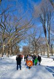 Central Park on January 24, 2016, NYC, USA. Stock Photos