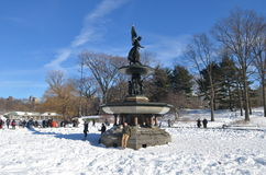 Central Park on January 24, 2016, NYC, USA. Royalty Free Stock Image