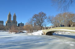 Central Park on January 24, 2016, NYC, USA. Royalty Free Stock Images