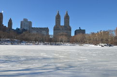 Central Park on January 24, 2016, NYC, USA. Stock Photo
