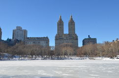 Central Park on January 24, 2016, NYC, USA. Stock Images