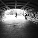 Central Park jazzu gracz Obraz Stock