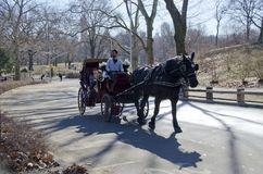 Central Park Kareciana przejażdżka Zdjęcie Royalty Free