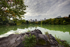 Central Park at the lake Stock Image