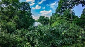 Central Park Lake Royaltyfri Fotografi