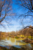 Central Park lake royalty free stock photo