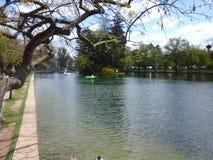 Central Park Lake Stock Photos
