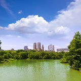 Central Park The Lake Manhattan New York Stock Photography
