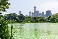 Central Park The Lake Manhattan New York Stock Image