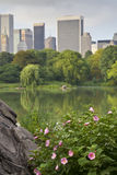 Central Park on lake in summer Royalty Free Stock Photos
