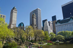 Central Park lake and surrounding buildings. Central Park beautiful blossoming trees and surrounding Manhattan buildings stock image