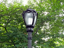 Central Park lamppost Stock Images
