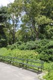 Central Park landscape in Midtown Manhattan from New York City in United States Stock Images