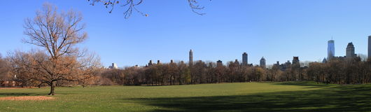 Central Park lawn panorama Stock Image