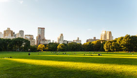 Central Park life in New York royalty free stock photo