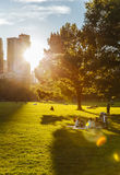 Central Park life in New York at sunset. Life of the Centra Park in New York at sunset Royalty Free Stock Image