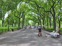 Central Park-literarischer Weg stockbilder
