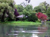 Central Park in München Lizenzfreie Stockfotografie