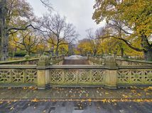 Central Park Mall. Is a mall in Central Park, in Manhattan, New York City Stock Photography