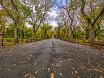 Central Park Mall. Is a mall in Central Park, in Manhattan, New York City Stock Image