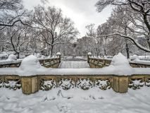 Central Park Mall in winter Royalty Free Stock Image