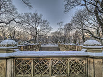 Central Park Mall  in winter Stock Photo