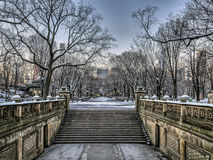 Central Park Mall  in winter Royalty Free Stock Photo