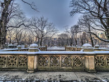 Central Park Mall  in winter Stock Image