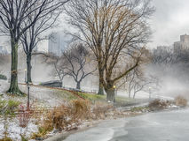Central Park, manhã nevoenta de New York City fotos de stock