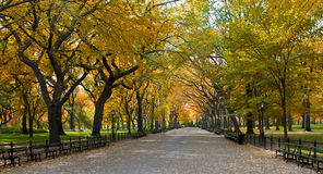 Central Park. Manhattan Royalty-vrije Stock Afbeeldingen