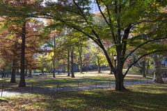Central Park Manhattan New York in autumn colors Royalty Free Stock Images