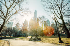 Central Park, Manhattan, New York City. Central Park during autumn/winter in Manhattan, New York City Royalty Free Stock Photography
