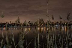 Central Park - Manhattan New York. View of Central Park. Long exposure Royalty Free Stock Photography