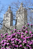 Central Park and Manhattan skyline Royalty Free Stock Photos