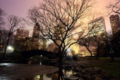 Central Park and Manhattan skyline Stock Photography