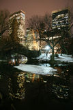 Central Park and manhattan skyline at night Stock Image