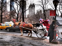 CENTRAL PARK. In March, Manhattan, New York Stock Images