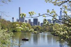 Central Park met horizon van Manhattan New York in de zomertijd Stock Fotografie