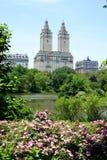 Central Park met toneelarchitectuur - de Stad van New York Stock Afbeelding