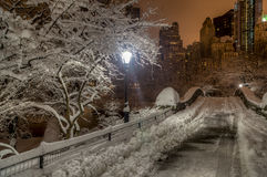 Central Park, Miasto Nowy Jork Fotografia Royalty Free