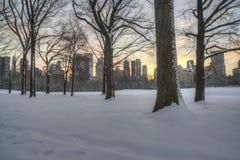 Central Park, Miasto Nowy Jork Obraz Stock