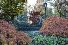 Central Park, Miasto Nowy Jork jesieni scena Fotografia Royalty Free