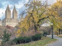 Central Park, Miasto Nowy Jork w opóźnionej jesieni Obraz Royalty Free