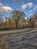 Central Park, Miasto Nowy Jork w opóźnionej jesieni Zdjęcie Stock