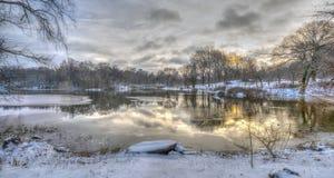 Central Park, Miasto Nowy Jork w zimie obrazy stock