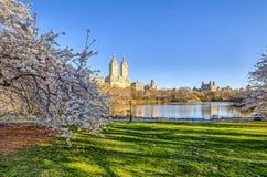 Central Park, molla di New York Fotografia Stock