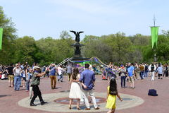 Central Park na mola Foto de Stock