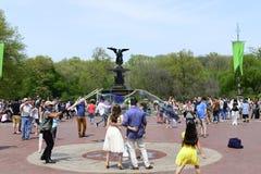 Central Park na mola Imagem de Stock