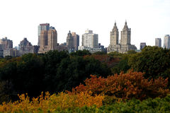 Central Park in New York Stock Image