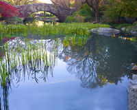 Central Park, New York. stock afbeelding